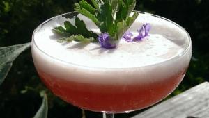 Botanical Cocktail