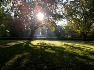 Southwark Park in sunshine - thumb