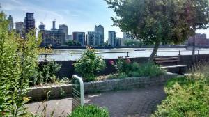 Thames Path by Farm - thumb