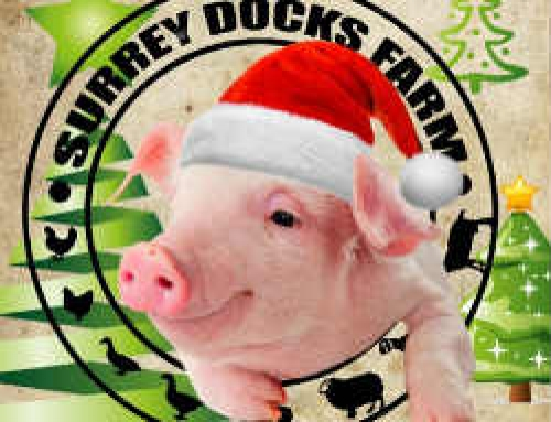 5 December – Surrey Docks Farm, Christmas Fair