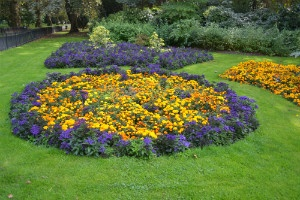 Flower bed - thumb