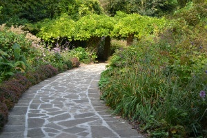 Path - thumb